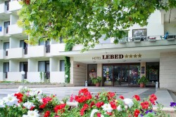 Lebed ****
